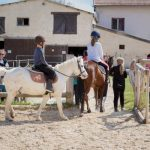 Destockage: Formation equitation | Avis des experts